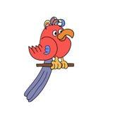 Papagaio engraçado Imagens de Stock