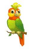 papagaio engraçado dos desenhos animados ilustração do vetor