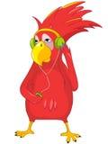 Papagaio engraçado que escuta a música. Imagem de Stock