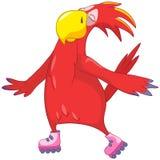 Papagaio engraçado. Rolo. Imagens de Stock