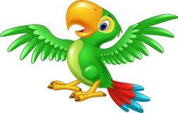 Papagaio feliz dos desenhos animados isolado no fundo branco Imagens de Stock