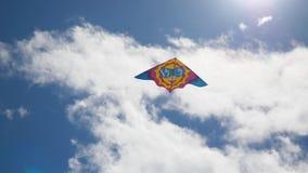 Papagaio no céu Vôo colorido do papagaio no céu azul Sob o papagaio do voo do céu azul filme