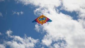 Papagaio no céu Vôo colorido do papagaio no céu azul Sob o papagaio do voo do céu azul vídeos de arquivo