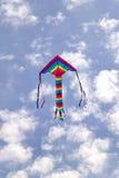Papagaio no céu Imagem de Stock