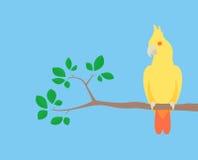 Papagaio no ramo Foto de Stock