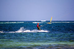 Papagaio que surfa em Watamu fotografia de stock