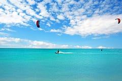 Papagaio que surfa na ilha de Aruba no mar das caraíbas foto de stock