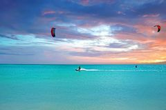 Papagaio que surfa na ilha de Aruba no por do sol imagens de stock
