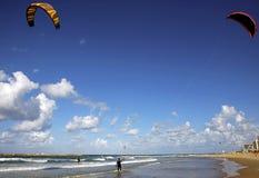 Papagaio que surfa na praia de Telavive Fotos de Stock