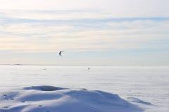 Papagaio que surfa no inverno Fotografia de Stock Royalty Free