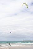 Papagaio-Surfista Fotografia de Stock