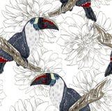 Papagaio Teste padrão sem emenda Fotografia de Stock