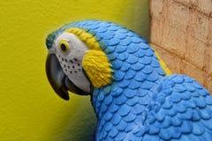 Papagaio tropical Imagem de Stock Royalty Free