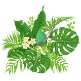 Papagaio verde e plantas tropicais ilustração stock