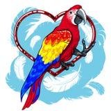 Papagaio vermelho colorido com asas azuis ilustração do vetor
