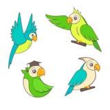 Papagaios bonitos dos desenhos animados ajustados no fundo branco Imagens de Stock