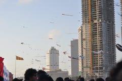 Papagaios bonitos no céu Céu cingalês fotos de stock royalty free