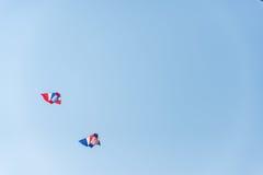 Papagaios coloridos no céu azul Imagem de Stock