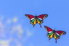 Papagaios coloridos que voam no céu azul Fotografia de Stock Royalty Free