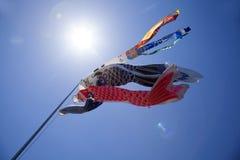 Papagaios da carpa de Koinobori do japonês Fotos de Stock