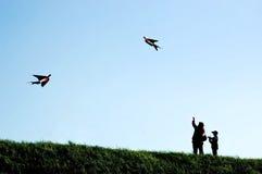 Papagaios da mosca da mãe e do filho Imagens de Stock Royalty Free