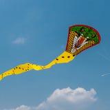 Papagaios da serpente Imagens de Stock Royalty Free