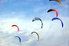 Papagaios de Colofull no céu azul Imagem de Stock