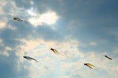 Papagaios no céu Fotografia de Stock Royalty Free