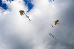 Papagaios no céu Imagem de Stock
