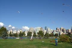 Papagaios no jogo, mosca do divertimento de BCKA Fotos de Stock