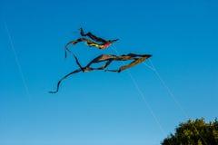 Papagaios pretos no céu Imagem de Stock Royalty Free