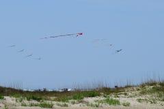 Papagaios que voam sobre a praia no forte Macon Fotos de Stock Royalty Free