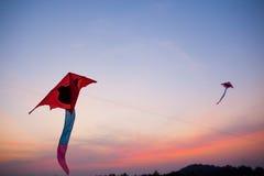 Papagaios vermelhos de voo   Fotos de Stock Royalty Free