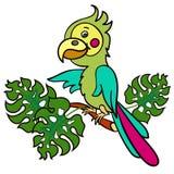 Papagei auf einem branch3-01 Stockfotografie