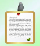 Papagei und goldener Rahmen Lizenzfreie Stockfotos