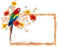 Papagei und tropische Blumen lizenzfreie abbildung