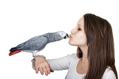 Papageien-ANG des afrikanischen Graus junges Mädchen stockbild