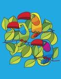 Papageien im Baum Stockfotos