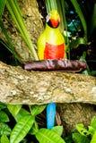 Papageienstatue stockfotografie