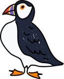 Papageientaucher Lizenzfreies Stockfoto
