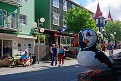 Papageientaucher, Akureyri, Island stockfotos