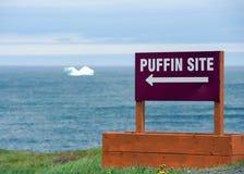 Papageientaucherstandortzeichen mit Eisberg in Atlantik stockfotos
