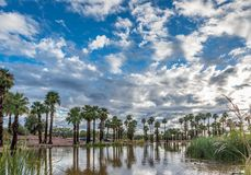 Papago Pond royalty free stock photography