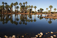 Papago Ponds Stock Photography