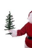Papai Noel com árvore Foto de Stock Royalty Free