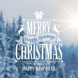 Papai Noel em um sledge Imagens de Stock Royalty Free