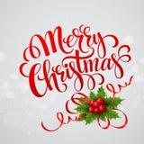 Papai Noel em um sledge Ilustração do vetor Fotos de Stock