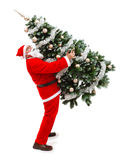 Papai Noel que carreg uma árvore de Natal decorada Fotos de Stock