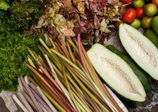 A papaia, água provem lilly e vegetais e ervas orgânicos frescos Imagens de Stock