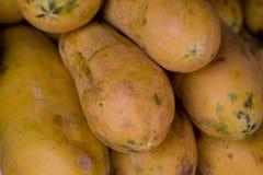 Papaia Fotografia Stock